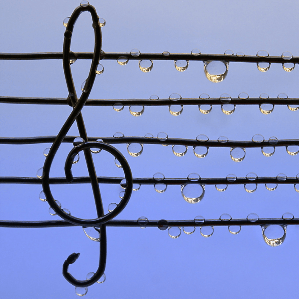 clefs cover image